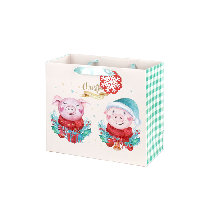 PPW quality custom gift bags wholesale for advertising-2