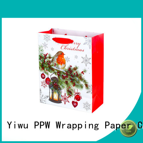 PPW professional paper bag wholesale for advertising