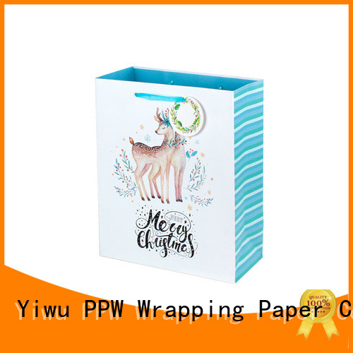 PPW small gift bags wholesale for festival