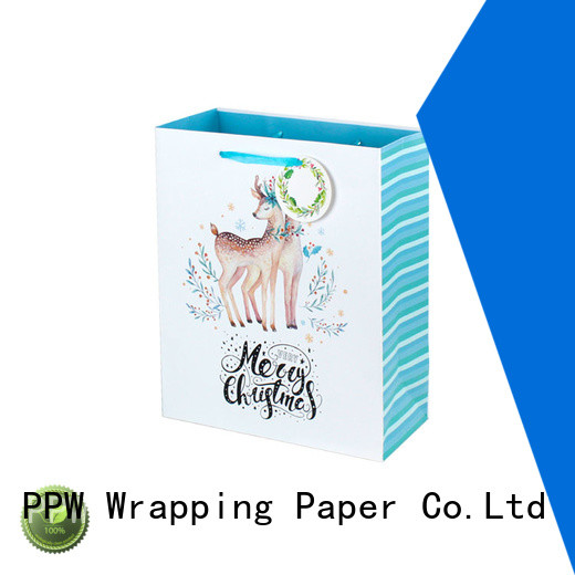 PPW christmas gift bags personalized for festival