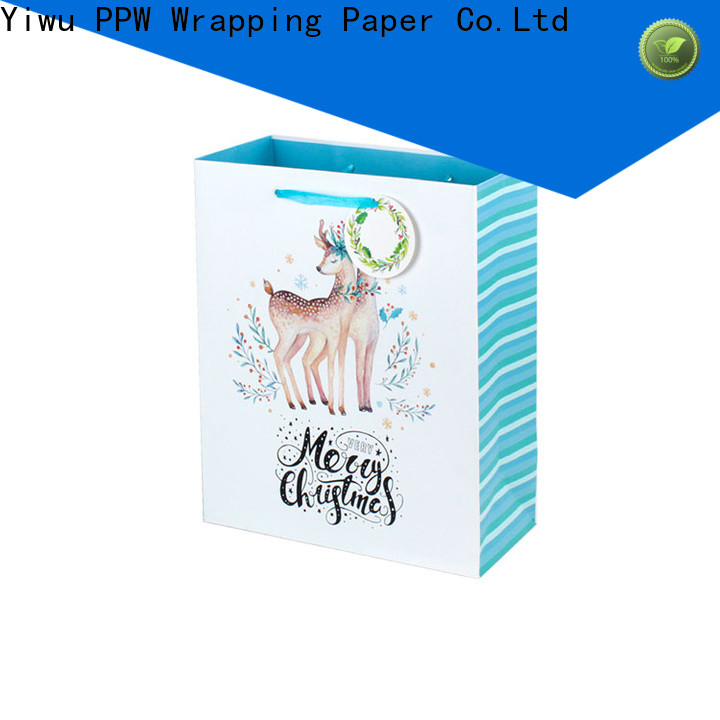 PPW paper party bags supplier for festival