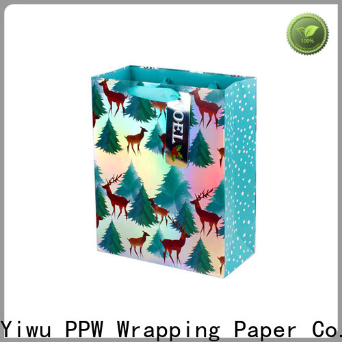 PPW professional gift bags bulk factory price for birthday