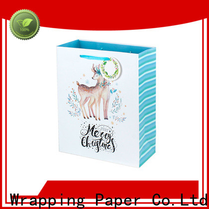 PPW custom christmas goodie bags supplier for birthday