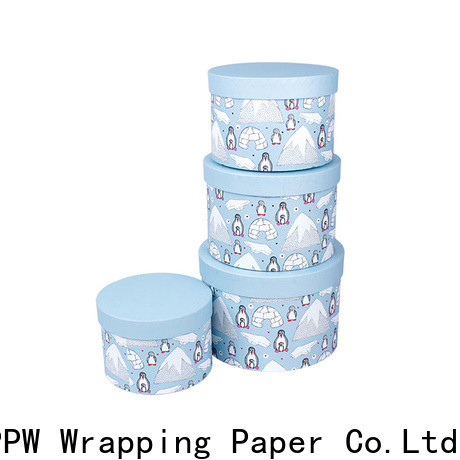 PPW eco-friendly custom packaging boxes wholesale for Christmas