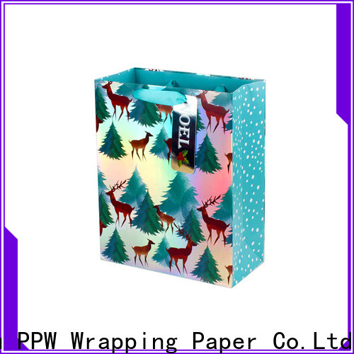 PPW paper party bags factory price for advertising